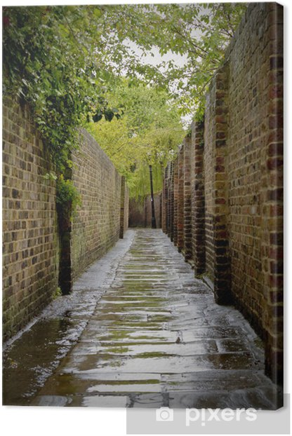 Alleyway Canvas Print - Themes