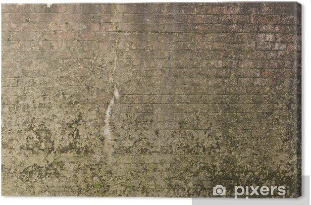 alte steinmauer Canvas Print - Themes