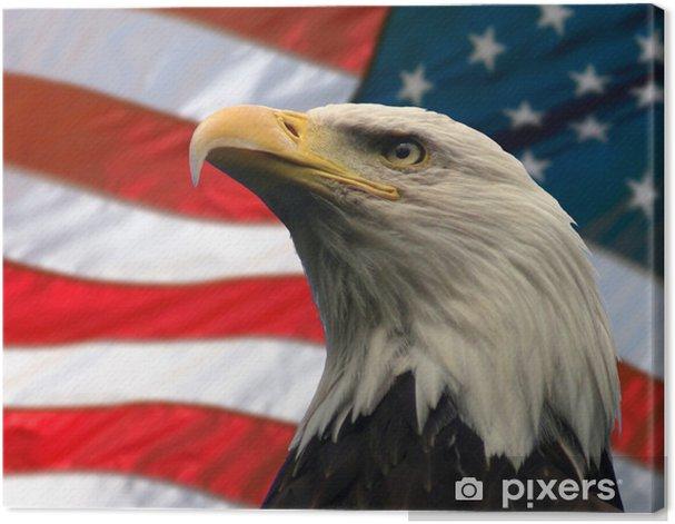 american eagle Canvas Print - Themes