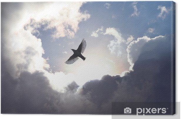Angel Bird in Heaven Canvas Print - iStaging
