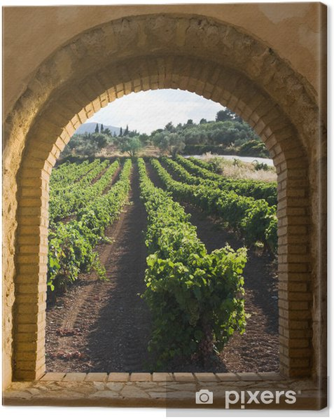 Arched Window On The Vineyard Canvas Print - Themes