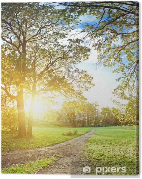Autumn in park Canvas Print - Seasons