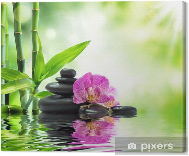 Background spa - orchids black stones and bamboo on water Canvas Print - Themes