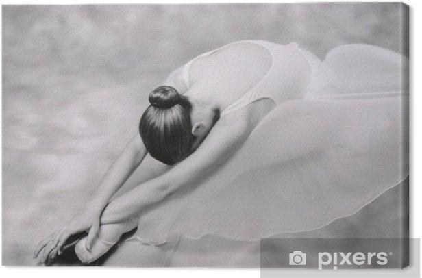 bailarina 1 Canvas Print - Themes