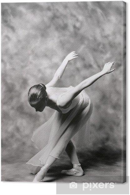 bailarina 2 Canvas Print - Themes