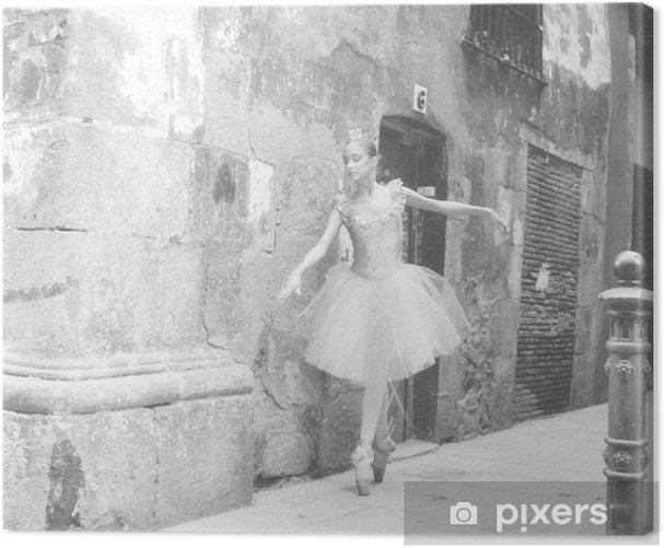 bailarina 4 Canvas Print - Themes