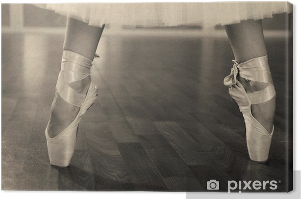 Ballerina legs in pointes in shades of grey Canvas Print - Themes