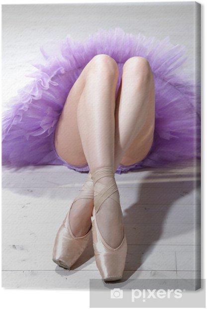 ballerina's legs Canvas Print - Themes