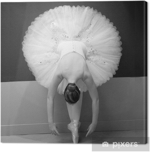 Ballet Dancer Canvas Print - Destinations