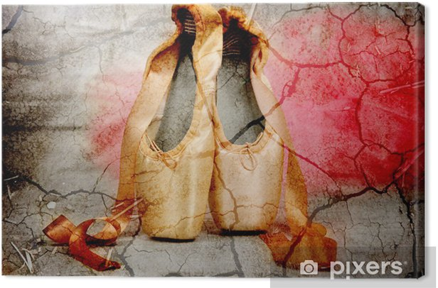 Ballet pointe shoes Canvas Print - Other objects