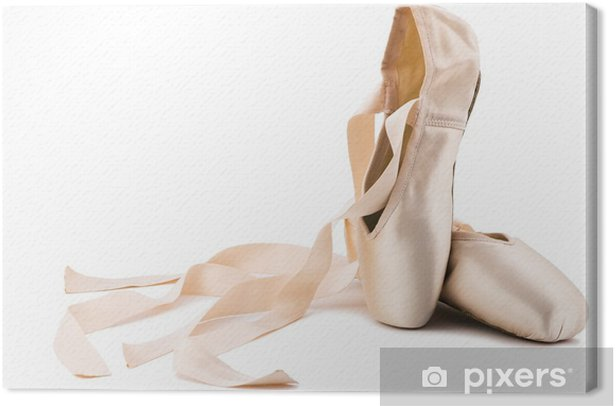 ballet shoes Canvas Print - iStaging