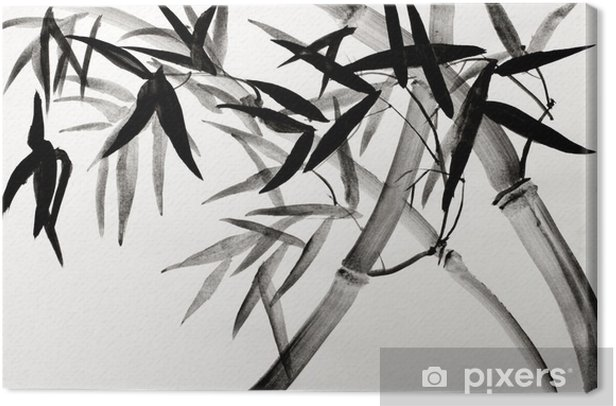 bamboo grove Canvas Print - Hobbies and Leisure