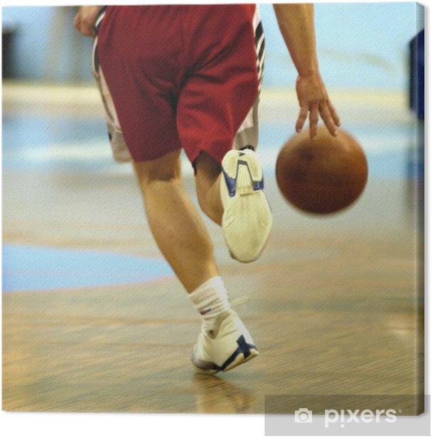 basket ball Canvas Print - Themes