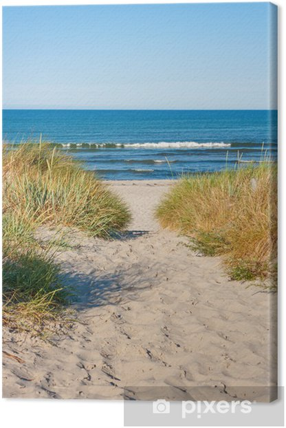 Beach access Canvas Print - Sea and ocean