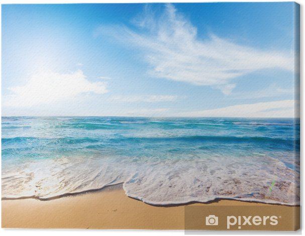 beach and sea Canvas Print - Themes