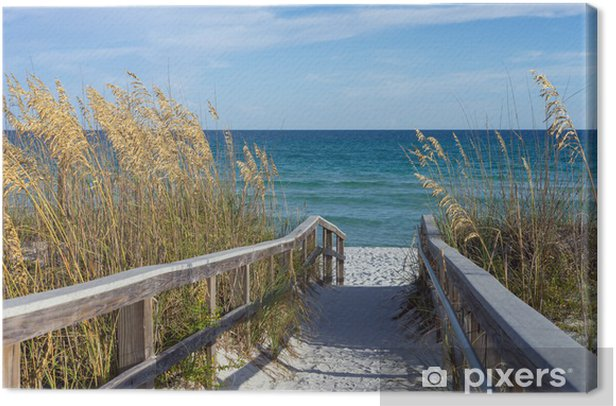 Beach Boardwalk with Dunes and Sea Oats Canvas Print - Themes
