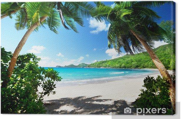 beach, Mahe island, Seychelles Canvas Print - Palm trees