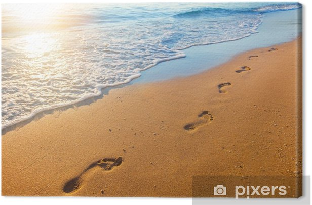 beach, wave and footprints at sunset time Canvas Print - Landscapes