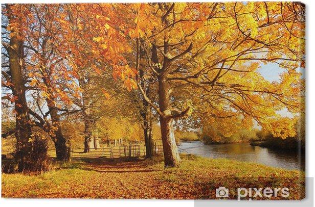 Beautiful Autumn in the Park, Scotland Canvas Print - Seasons