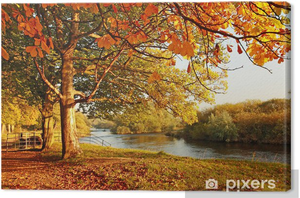 Beautiful Autumn in the park Canvas Print - Destinations