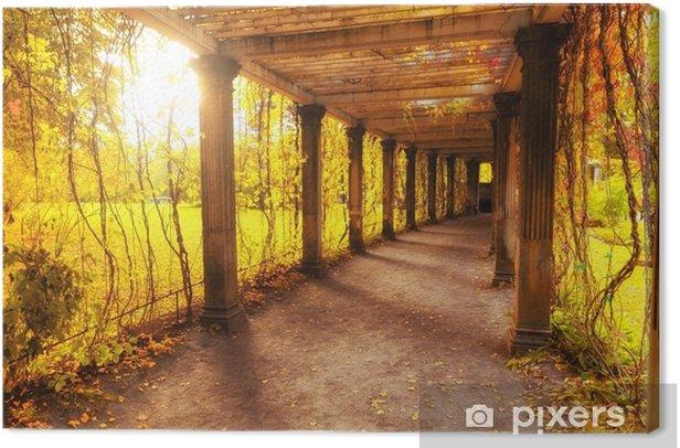 Beautiful autumn park Canvas Print - Landscapes
