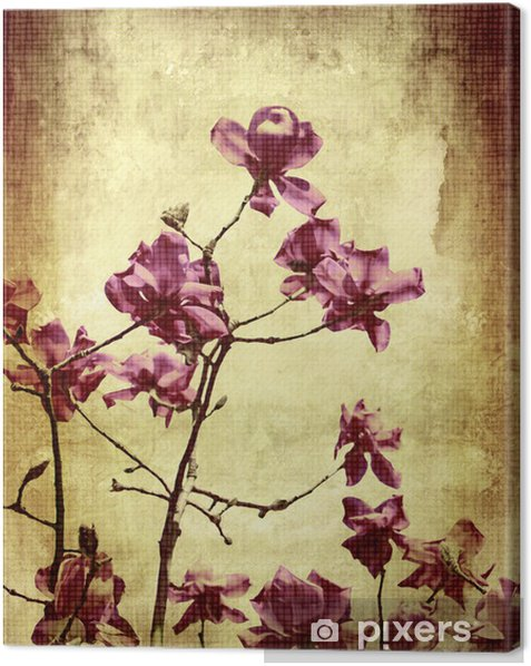 Beautiful grunge background with magnolia Canvas Print - Themes