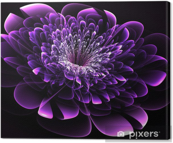 Beautiful purple flower on black background. Computer generated Canvas Print - Backgrounds