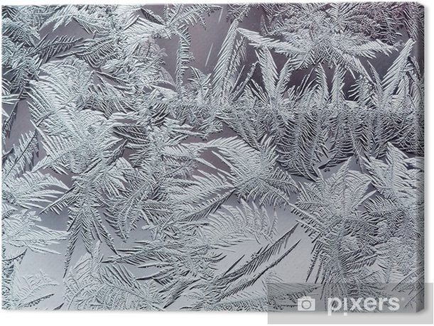 beautiful winter frosty pattern made of brittle transparent crystals on the glass Canvas Print - Graphic Resources