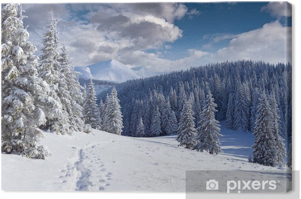 Beautiful winter landscape in the mountains Canvas Print - Seasons