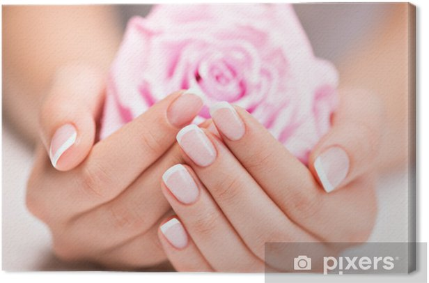 Beautiful woman's nails with french manicure and rose Canvas Print -