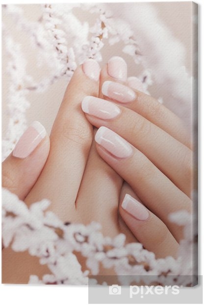 Beautiful woman's nails with french manicure. Canvas Print - Lifestyle>Body Care and Beauty