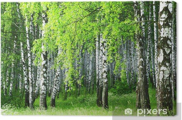 birch forest Canvas Print - Birches