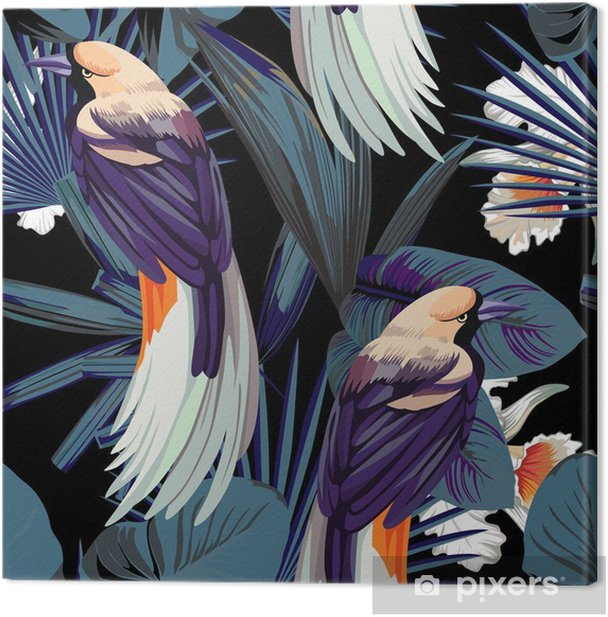 birds, orchids and night jungle seamless background Canvas Print - Animals
