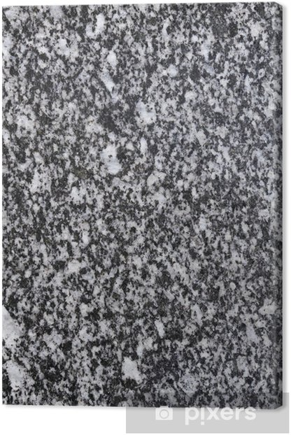Black And White Smooth Spotted Granite Slab Canvas Print