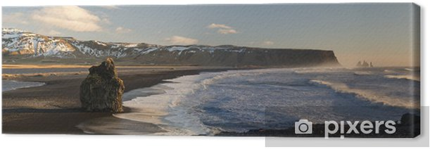 Black beach of Dyrholaey, Vik, Iceland Canvas Print - Europe