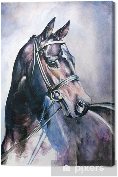 Black horse watercolor painted. Canvas Print - Styles