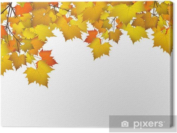 Blatter Herbst Hintergrund Farben Leafs Autumn Background