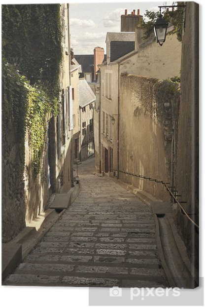 Blois Canvas Print - Europe