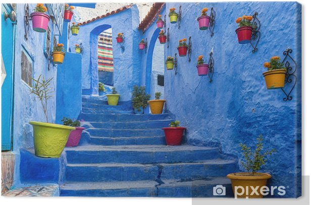 Blue staircase and wall decorated with colourful flowerpots, Chefchaouen medina in Morocco. Canvas Print - Travel