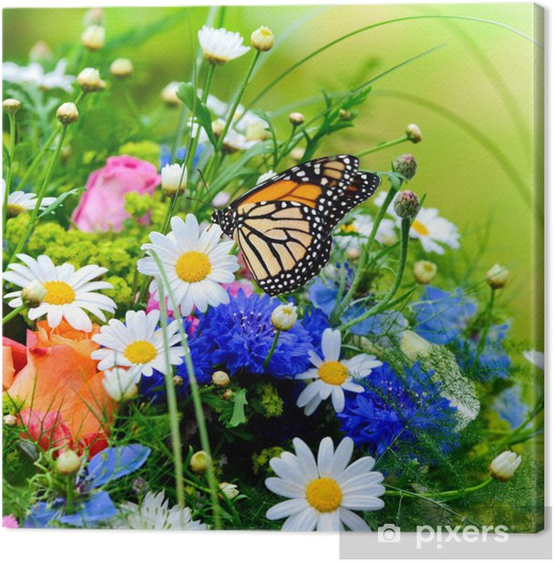 Blumenwiese Canvas Print - Themes