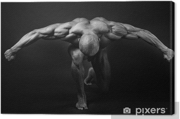 bodybuilding Canvas Print - Destinations