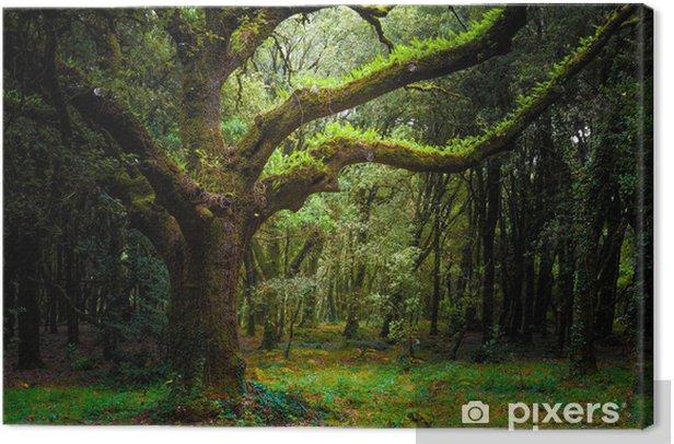 bosco Canvas Print - Forest
