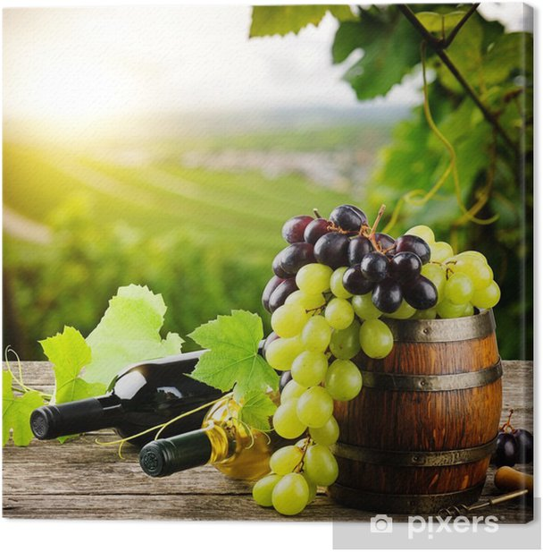 Bottles of red and white wine with fresh grape Canvas Print - France