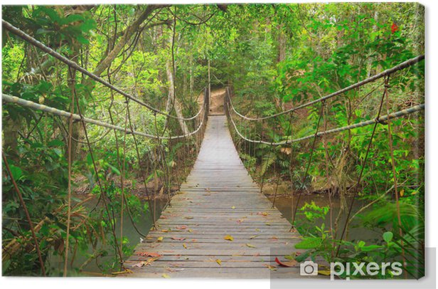 Bridge to the jungle,Khao Yai national park,Thailand Canvas Print - Styles