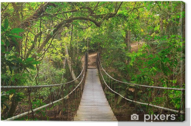 Bridge to the jungle, Thailand Canvas Print - Destinations