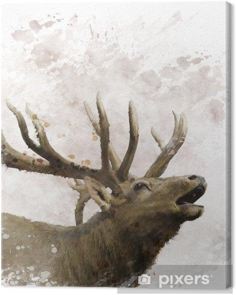 Bull Elk Watercolor Canvas Print - Animals