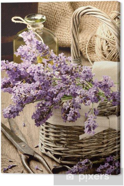 Bunch of freshly cut lavender Canvas Print - Themes