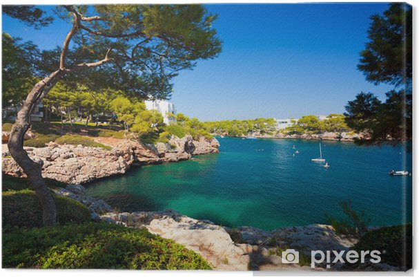 Cala d'Or bay, Majorca island, Spain Canvas Print - Themes