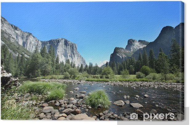 California - Yosemite National Park Canvas Print - Themes