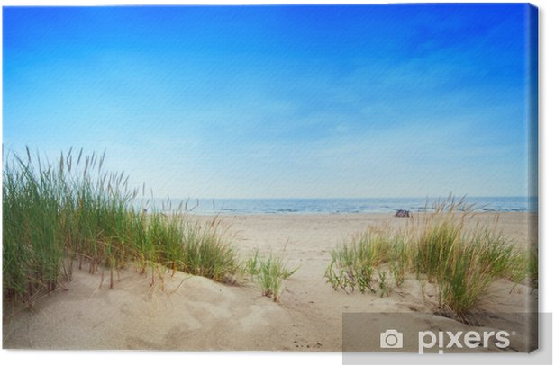 Calm beach with dunes and green grass. Tranquil ocean Canvas Print - Destinations
